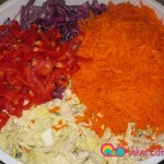 Add the shredded carrots and red bell peppers to the shredded cabbages.